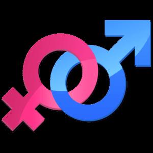 Gender Reveal Fireworks